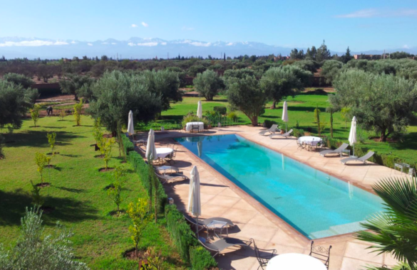 Standout 8 bedroom Guest-House close to Marrakech just listed