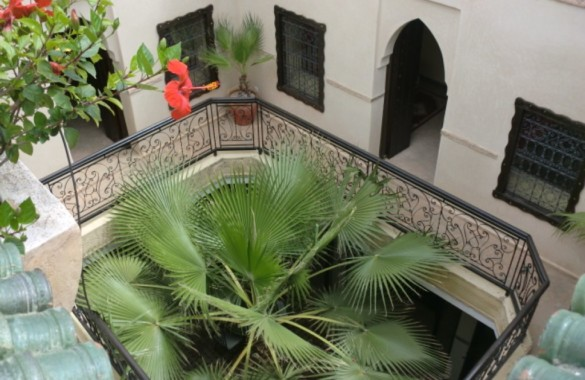 well located opportunity riad