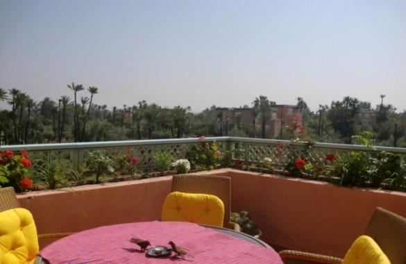 Appartement palmeraie