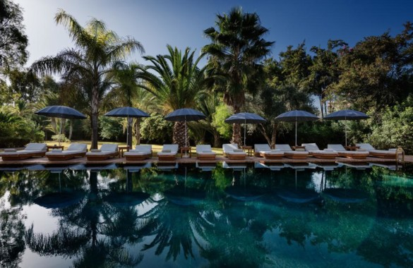 Elegant 14 suites Boutique-Hotel for sale in the Palmeraie of Marrakech