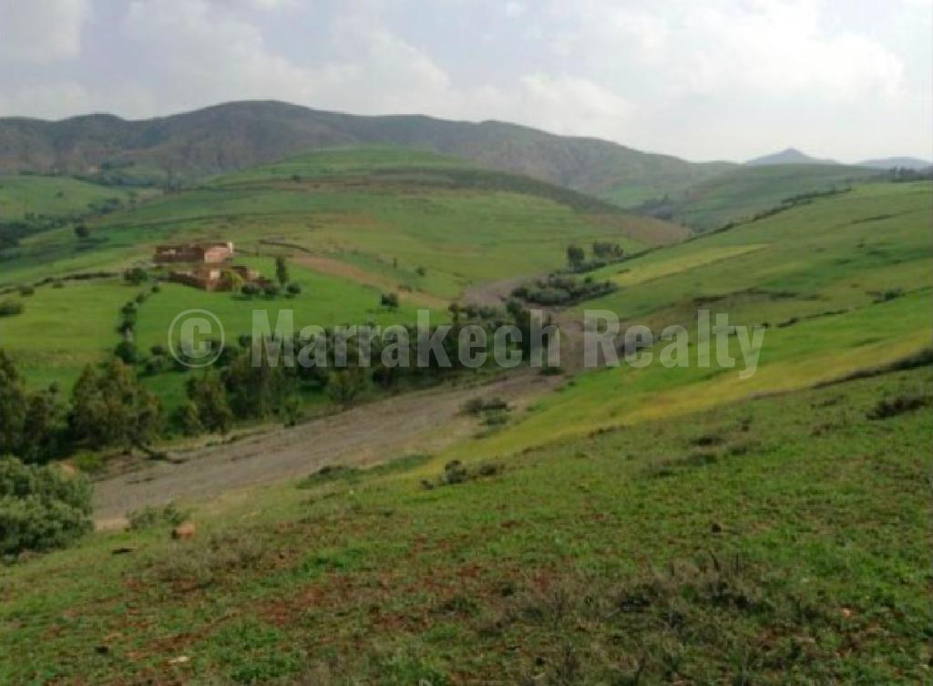 Superbe terrain d'1 hectare avec plan autorisé de construction