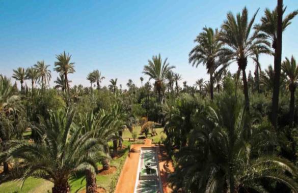 Exceptionnel Palais d'Hôtes de 14 suites en Palmeraie de Marrakech